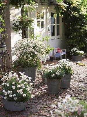 Landelijke tuin tips en voorbeelden - Tuin landscaping fotos ...